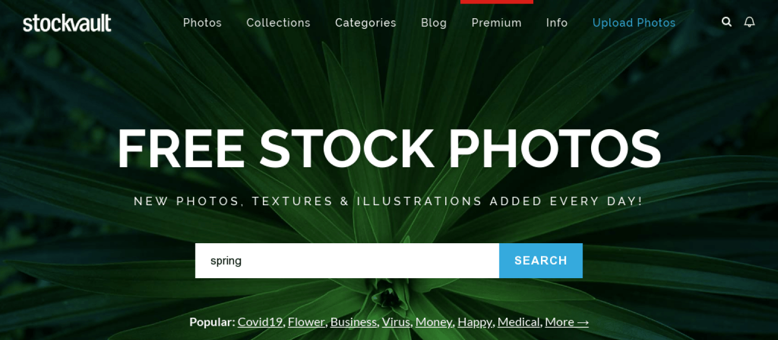27 of the Best Free Stock Photo Sites to Use in 2020 16