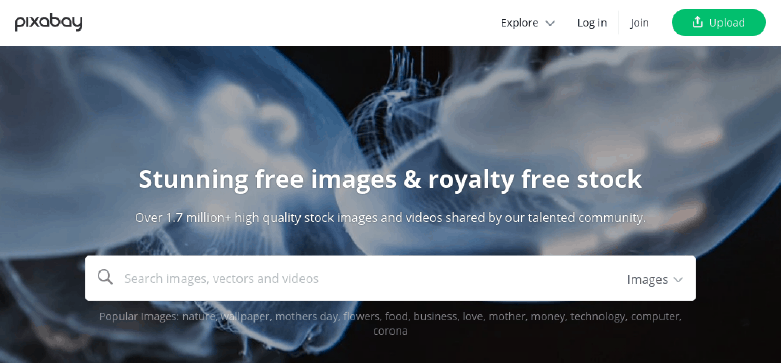 27 of the Best Free Stock Photo Sites to Use in 2020 1