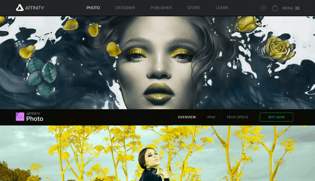 The Top Free (and paid) Image Editors to Elevate Your Digital Marketing Game (sorted by use) 2